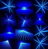 Vign_bleu