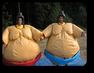 Vign_sumo-en-mousse